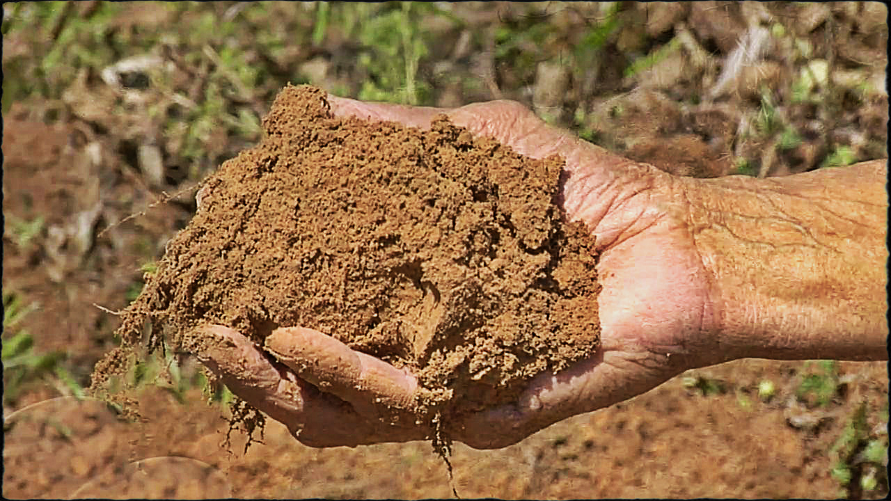 How To Fix Clay or Sandy Soils  ThePrepperProjectcom
